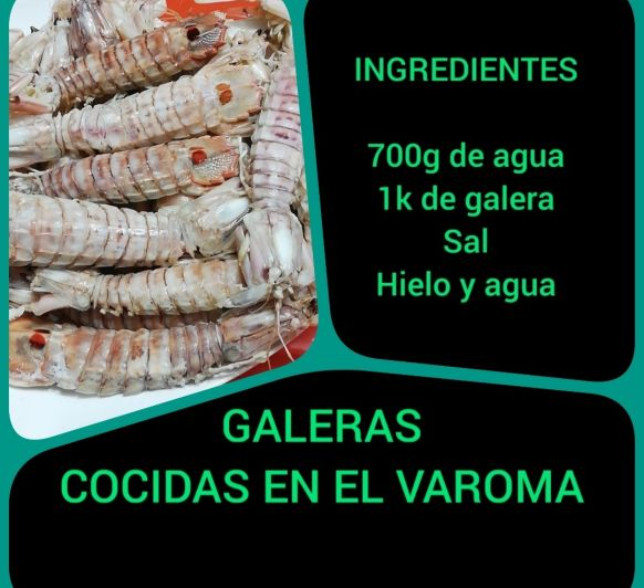 GALERAS COCIDAS AL VAPOR